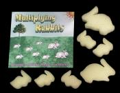 Multiplying Rabbits